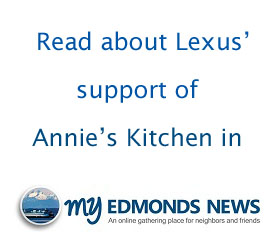 lexus widget